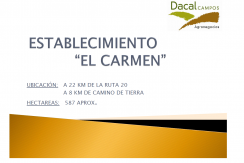 EL CARMEN 1