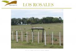 LOS ROSALES PAG 1