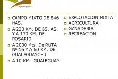 LOS ROSALES PAG 8